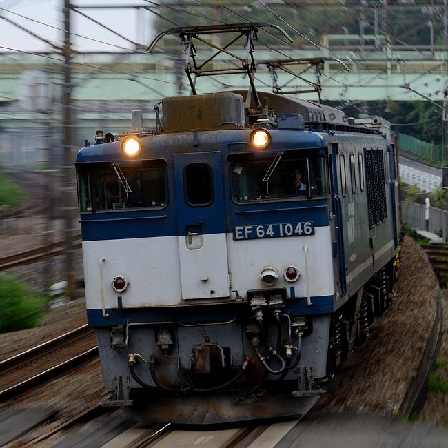 DSC_4980.JPG