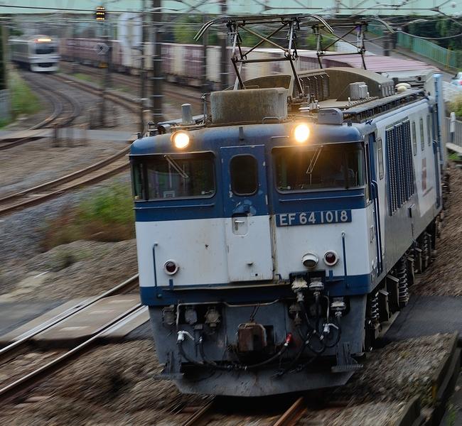 DSC_7457.JPG